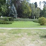 travel-slovenia-park-bled-view