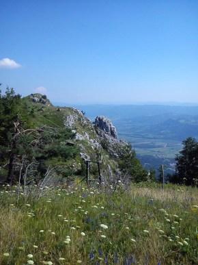 Landscape of Trnovski gozd