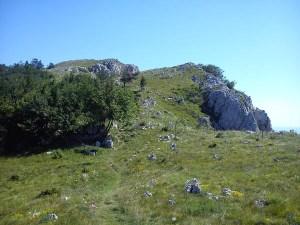 Plateau Trnovski gozd