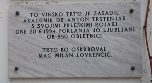Plaque with inscription: This grape vine was planted by academic Anton Trstenjak with his Prlek countrymen on June 6th 1994. It was a gift to Ljubljana at its 850. anniversary. Vine will be treated by mag. Milan Lovrenčič.