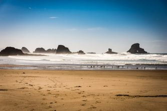 Panoramic View of the Beach at Ecola State Park - From Astoria to Cannon Beach