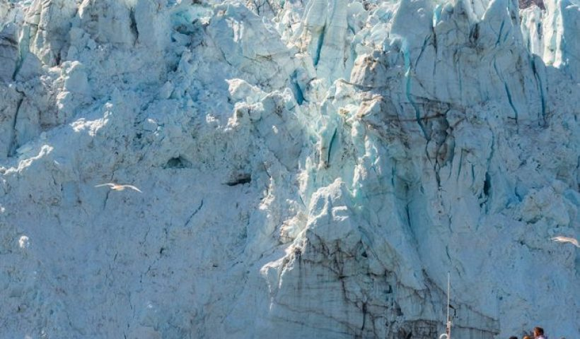 Glacier Bay, Alaska Cruise, Alaska, Cruise, Cruising