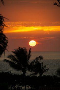 Maui - Tropical Sunset