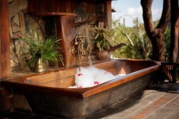 The Bath Tub with A view