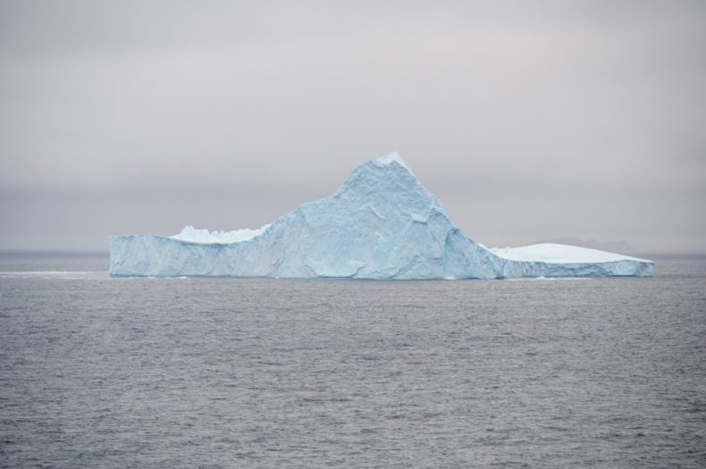 The first Iceberg on our cruise to Antarctica