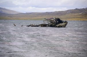 A shipwreck in the Falklands on our Cruise to South America