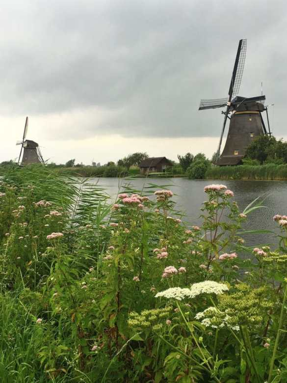 Kinderdijk, Netherlands. Viking River Cruises Grand European Tour: In Review