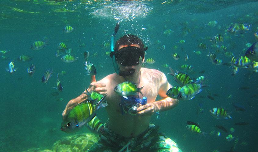 Nadando com peixes na Tailândia