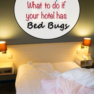 Travel Tips: What to do if your hotel has bed bugs