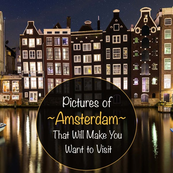 Pictures of Amsterdam That Will Make You Want to Visit