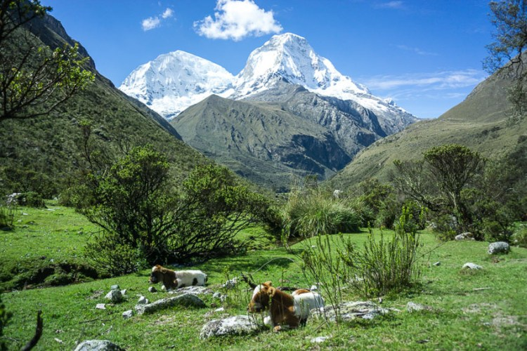 Cordillera Blanca da Travel with the smile-012017