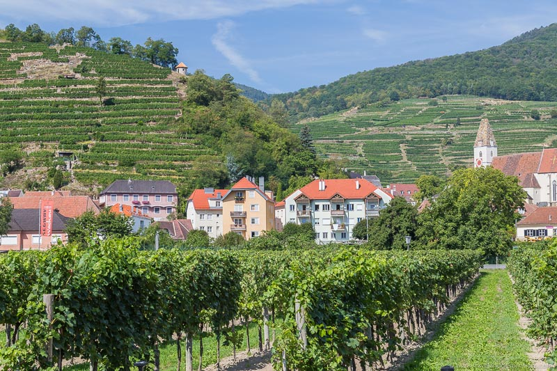 Aldeias e vinhedos no Vale Wachau