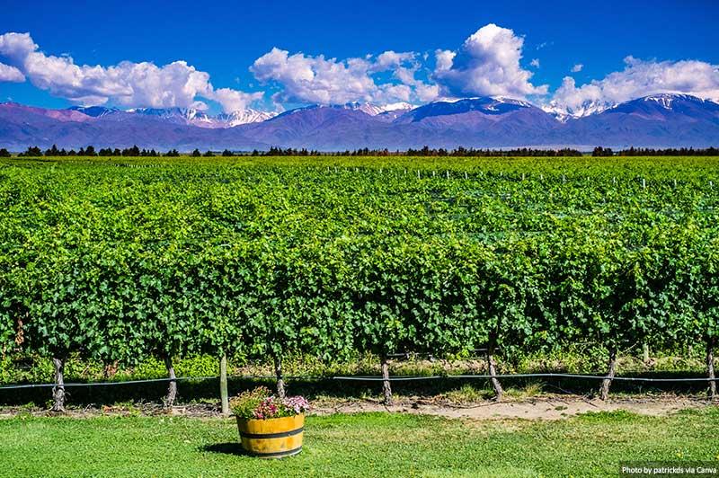Vinícola em Mendoza, Argentina
