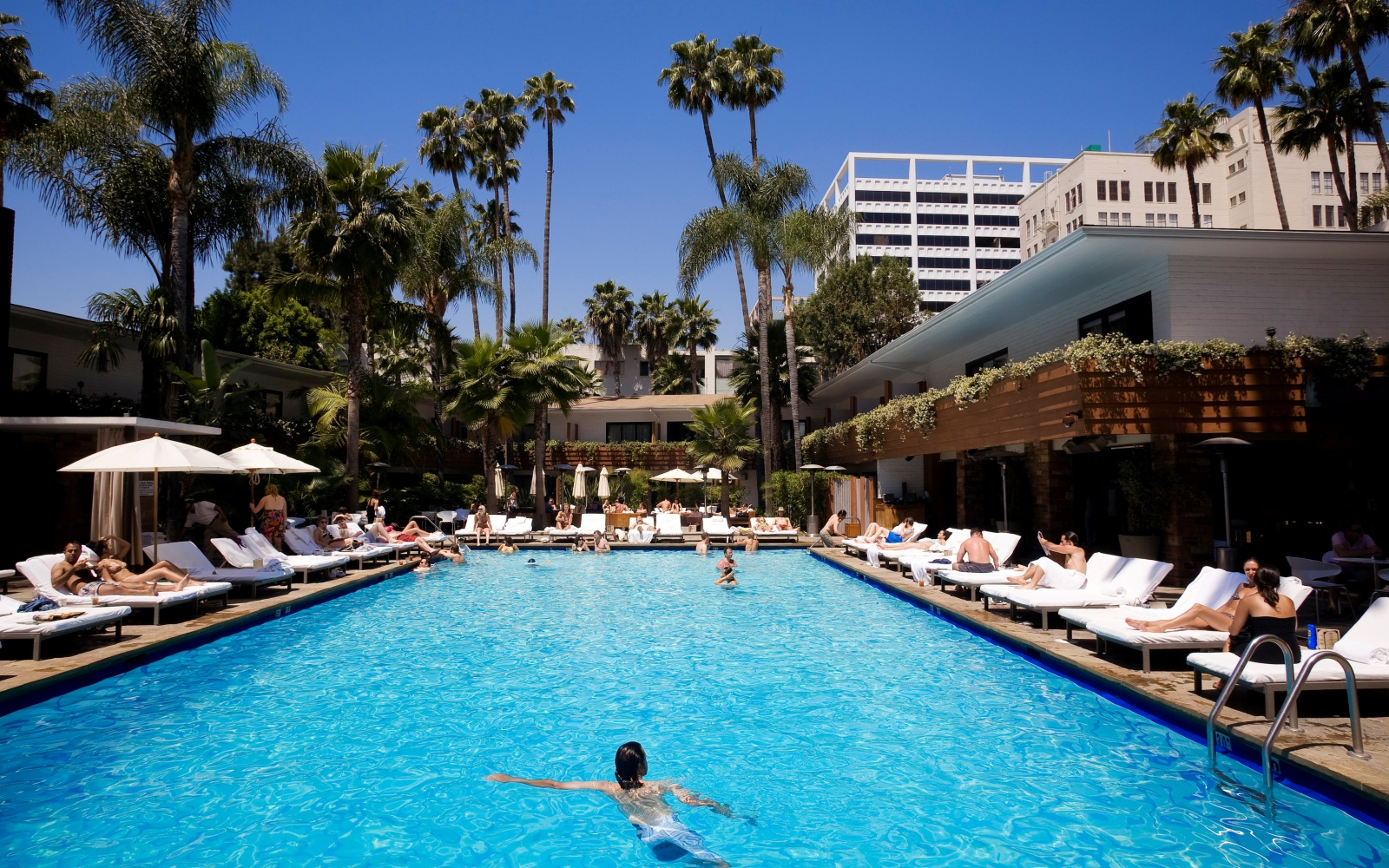 Hotel Pools In Los Angeles Travel Leisure