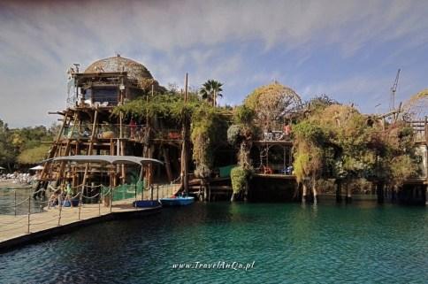 Ejlat Izrael atrakcje turystyczne - Delfinarium