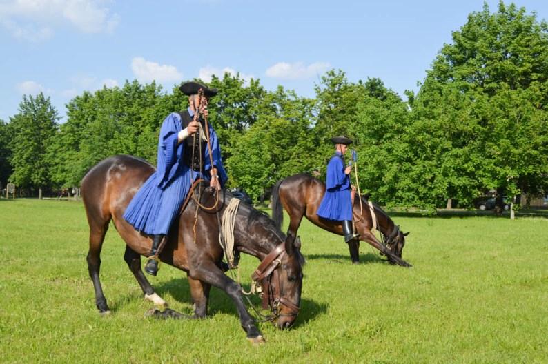 Paardenshows in Hongarije
