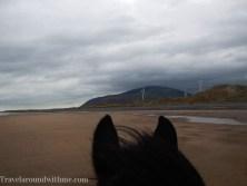 Heavy Horses Lake District