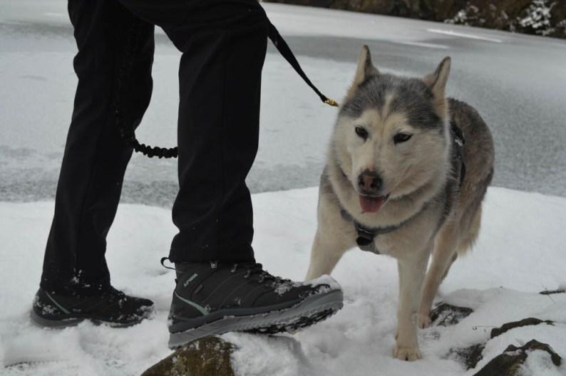 LOWA - wandelschoenen - wintersport eten van de wintersport