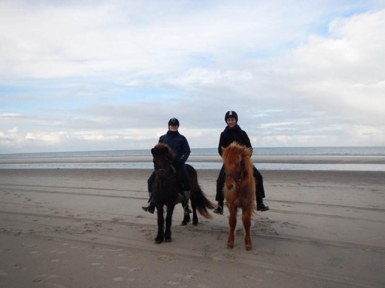 Paardrijden in Nederland