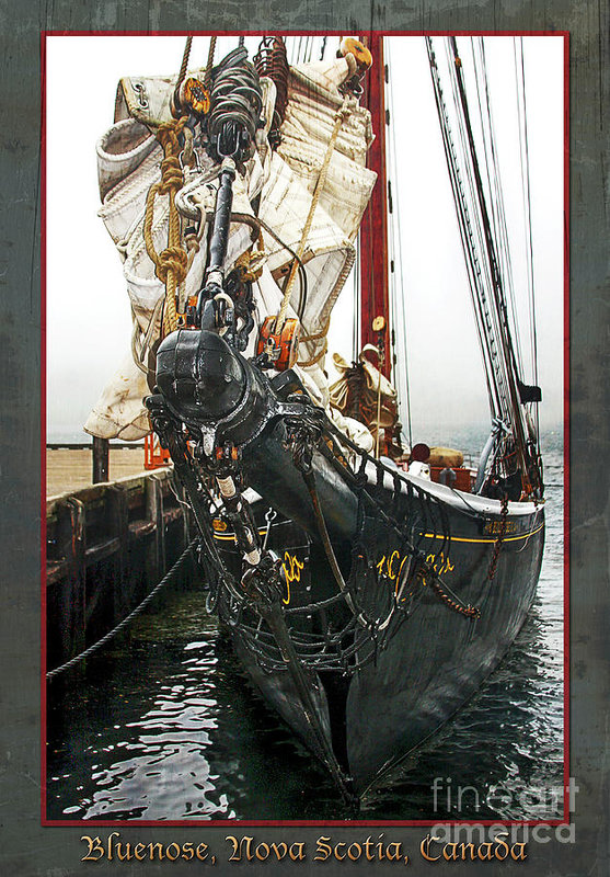 Buenose schooner II - vertical framed by Tatiana Travelways