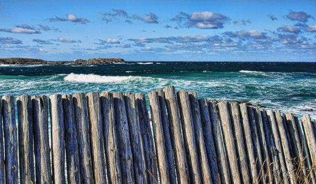 Bonavista coastline fence by Tatiana Travelways