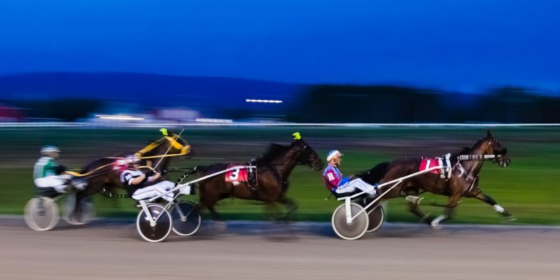 Harness Race, Nova Scotia, Canada