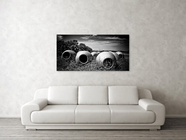 Feed Me black and white photo print above the living-room sofa, by Tatiana travelways