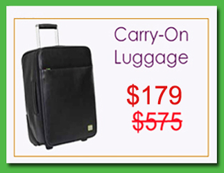 Carry on Holiday Sale - RESIZED