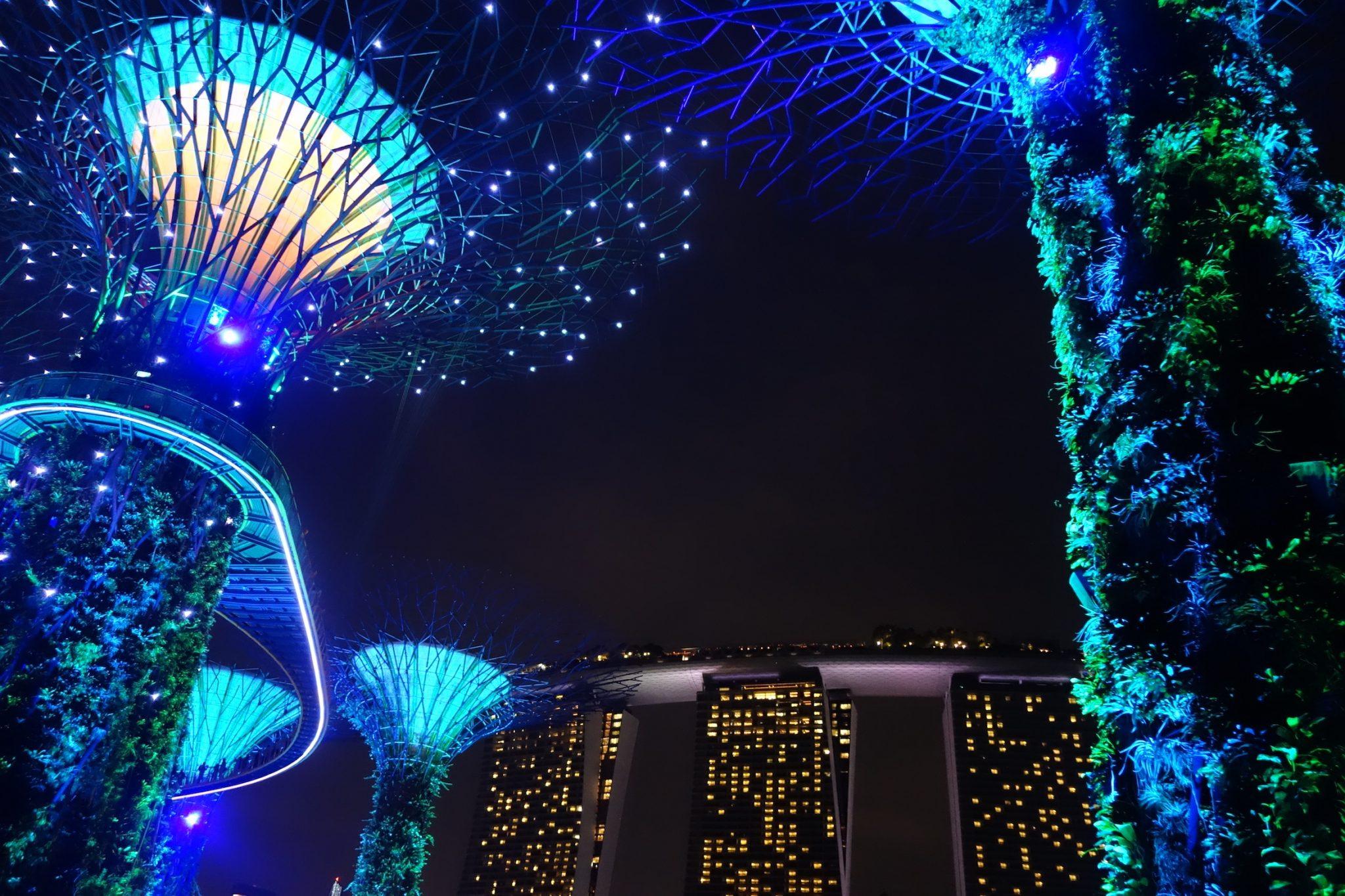 Singapur_GardensbytheBay_SkyTrees_beiNacht_5