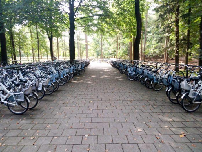 Free white bikes, Nationaal Park De Hoge Veluwe, the Netherlands