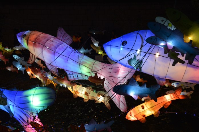 2016 Lantern Festival, Seoul, South Korea