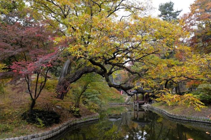 Huwon (Secret Garden), Changdeokgung Palace, Seoul, South Korea