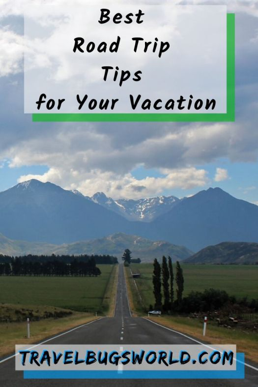 Best_Road_Trip_Tips_for_Your_Vacation_pin
