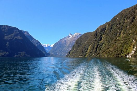 Cruise view at Milford Sound New Zealand