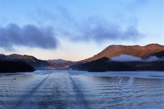 View from bBoat trip from Picton