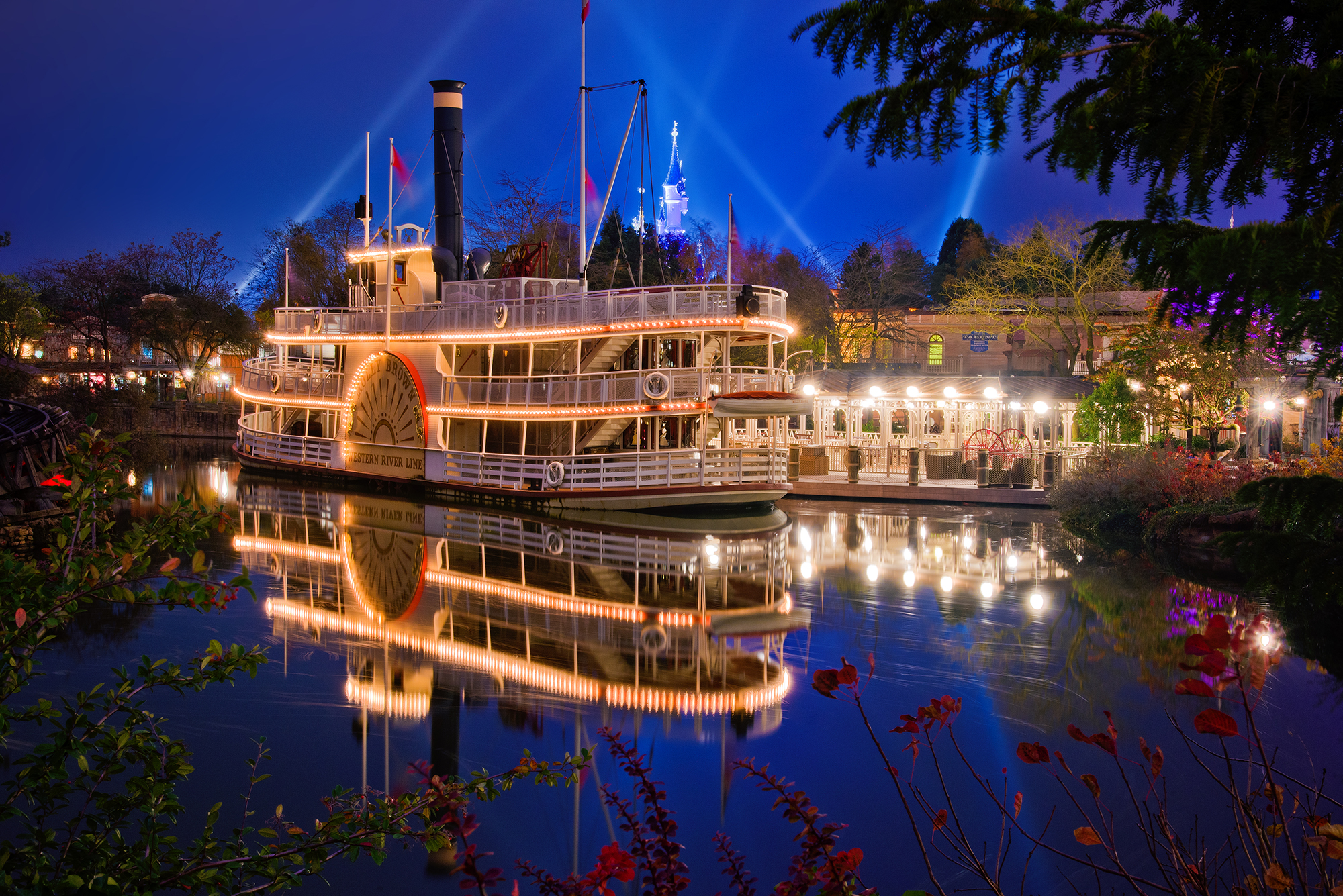 Cute Background Wallpaper For Computer Christmas Lights Animal Hd The Molly Brown At Disneyland Paris Travel Caffeine