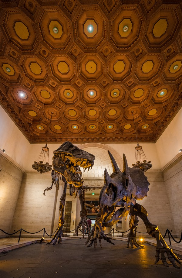 Natural History Museum Of Los Angeles County & Tips