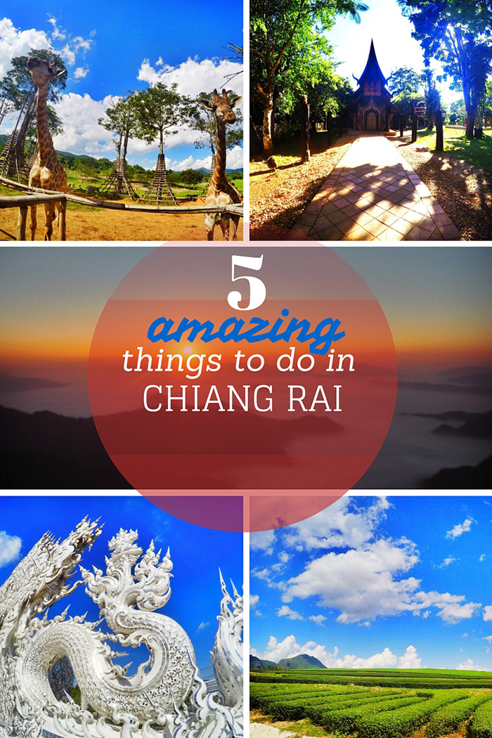 5 Amazing Things to do in Chiang Rai  travelcolorfully