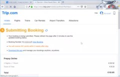 Trip.com hotel booking review : Submitting booking to hotel to get hotel confirmation