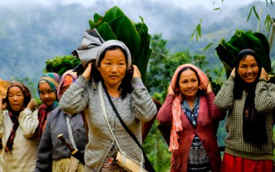 Why Basar in Arunachal Pradesh Should Be On Your Bucket List?
