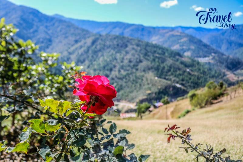 Breathtaking Landscape in Dirang Valley