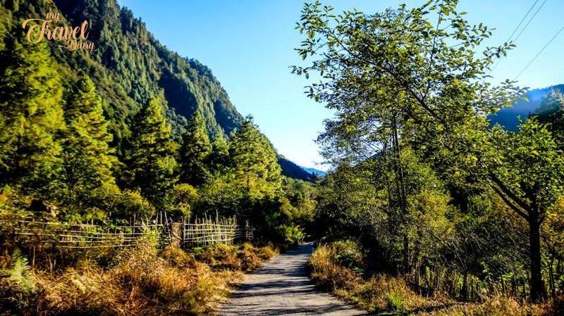 Alynie Village is the largest village of Anini in Arunachal Pradesh
