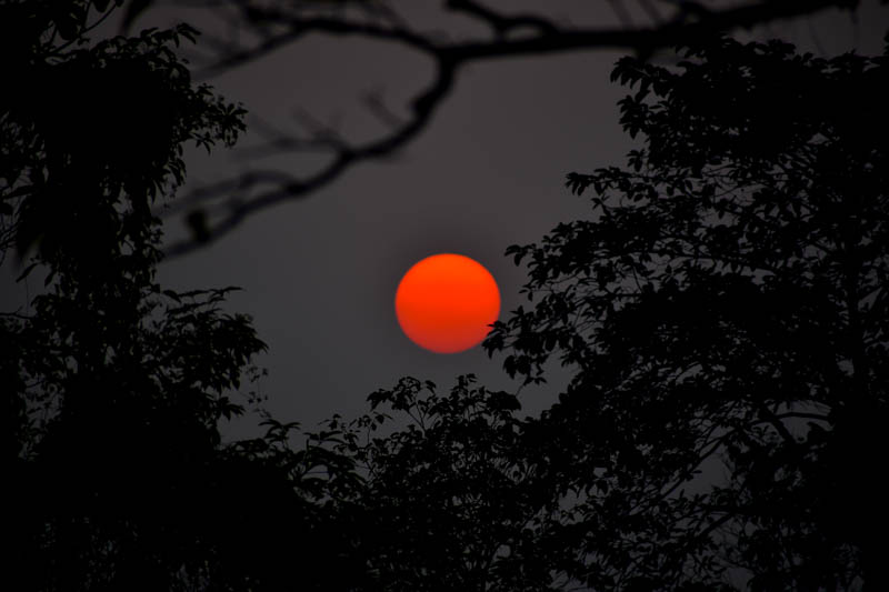 The magnificent Sunset seen while returning from jungle safari in Kaziranga National Park