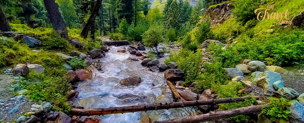 Freshwater stream in the middle of the forest in Sonamarg, Kashmir