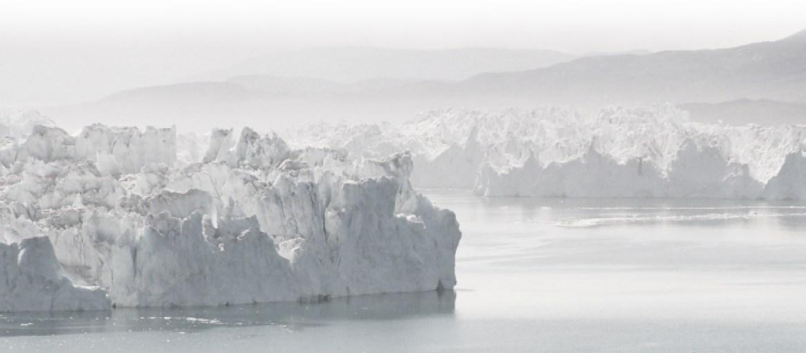 ISFJORD Premium Arctic Gin featured image 2