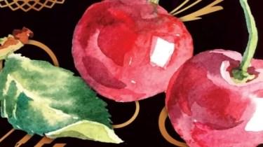 Omas Cherry Vodka featured image