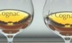 World_of_Cognac_Book_Review_featured_image