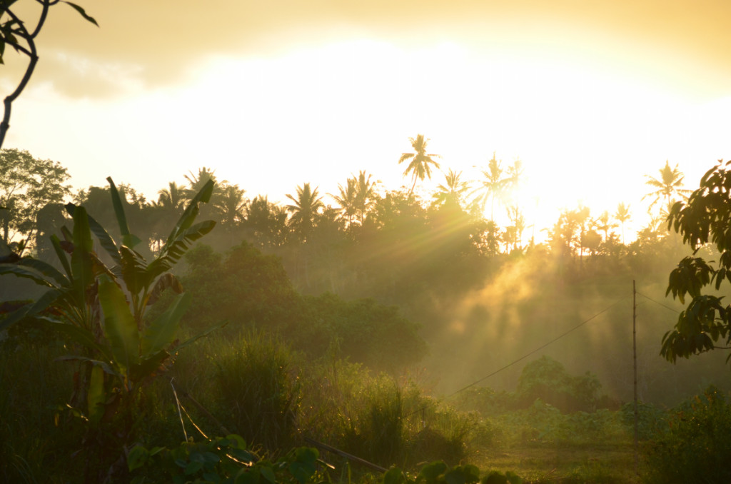 Things to do in Ubud, Indonesia