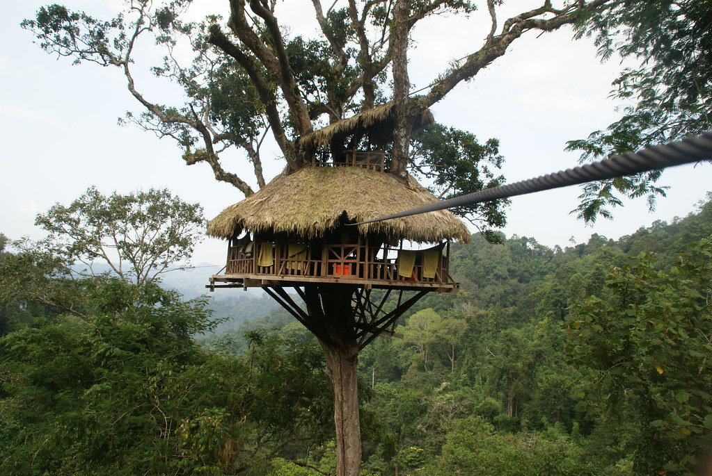 The Gibbon Experience in Laos