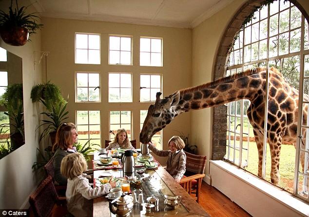 Giraffe manor house (1)